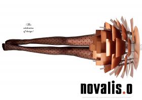 Novalis.O Advertentie_giraf_neuro advertising_vOSCH