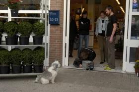FlorisVanBommel_groene sneaker_behind the scenes23